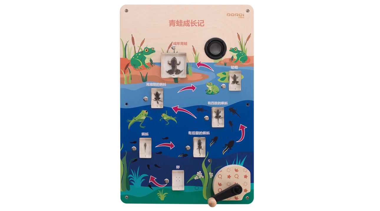 MDD-KJ-2146青蛙成长记(售价:2430元)